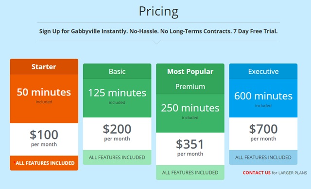 gabbyville pricing